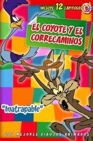 El Coyote y el Correcaminos