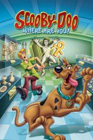 Scooby Doo dónde estas !: Temporada 3